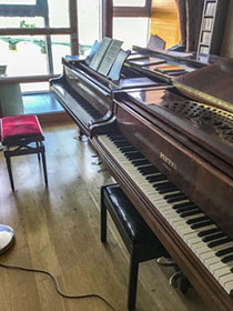 piano teacher Battersea